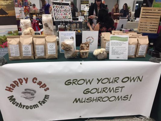 local mushroom producer grow mushroom small business