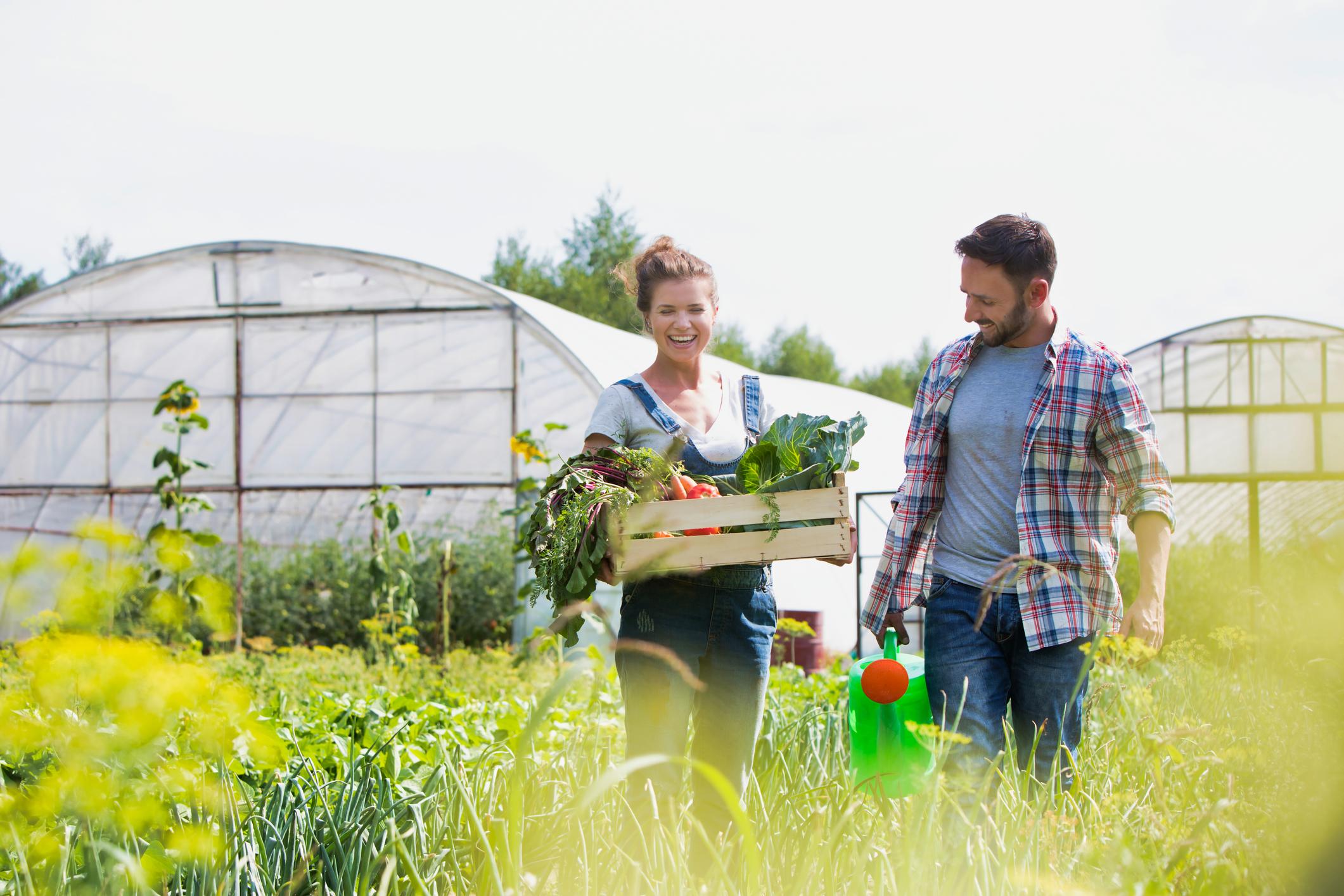 Local farming couple